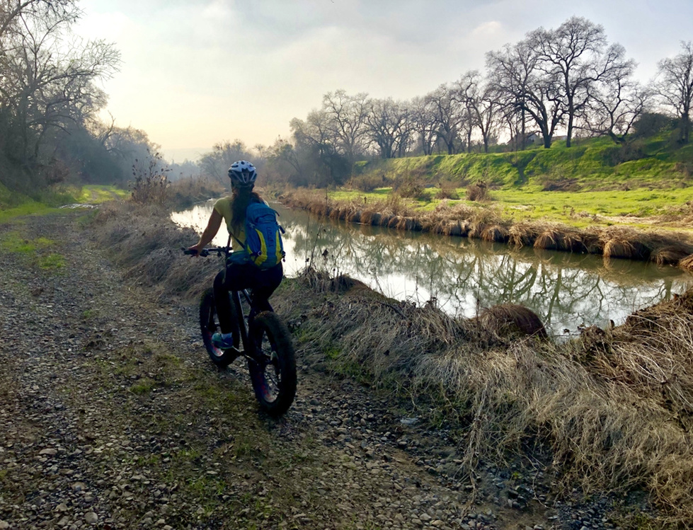 Jan 28 - 31, 2019 Weekday Ride and Trails Report-3754e1b7-767d-4b5c-bac7-1b6918531721.jpg