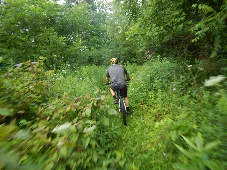 Local Trail Rides-37921545_2172281366349636_3592274113382580224_n.jpg