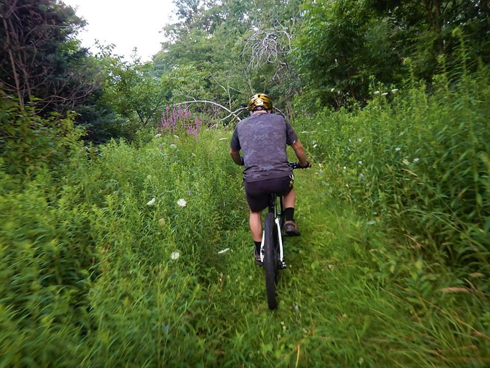 Local Trail Rides-37969470_2172291346348638_6382895286796156928_n.jpg
