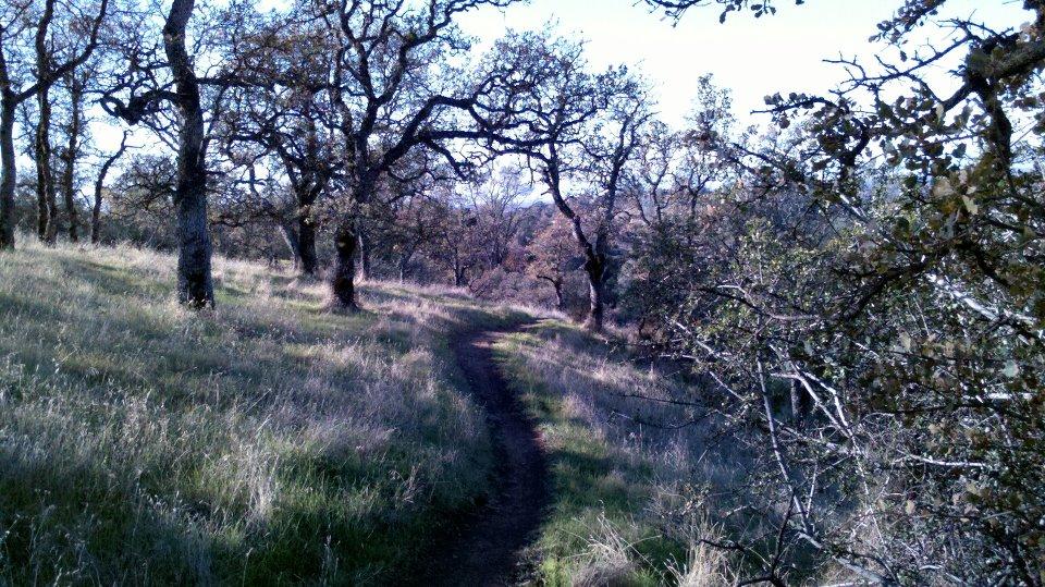 """Live from the trail"" photo thread-379941_786604785840_29910359_37345600_387775655_n.jpg"