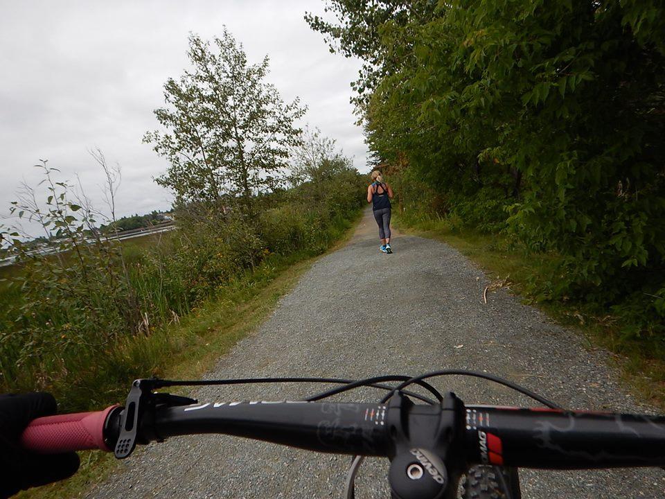 Local Trail Rides-38528974_2182076872036752_4649045538048573440_n.jpg