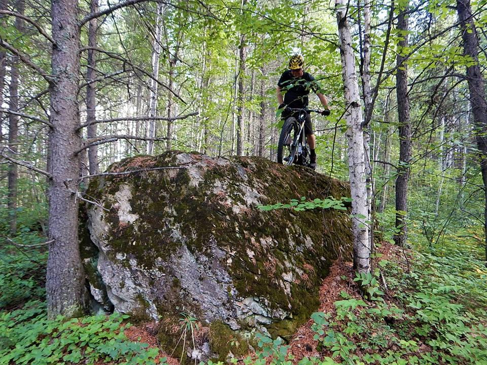 Local Trail Rides-38720638_2182599161984523_406048776554283008_n.jpg