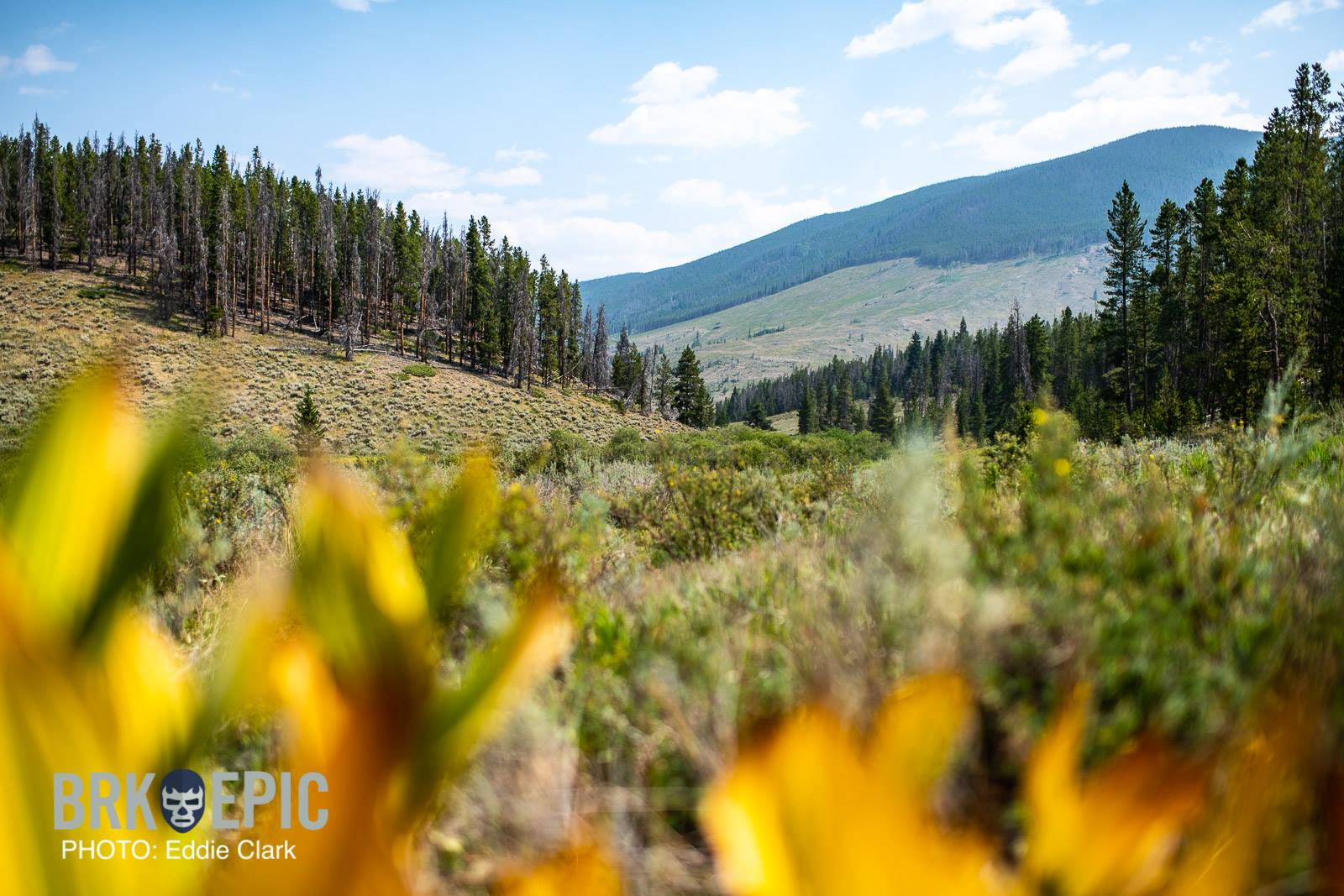 Breck Epic: Stage 4