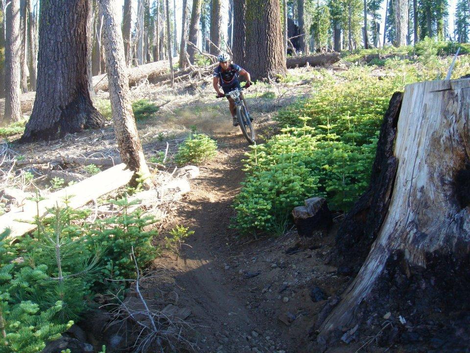 Tahoe-Sierra 100 - August 24, 2013-389017_3960866272963_2031671109_n.jpg