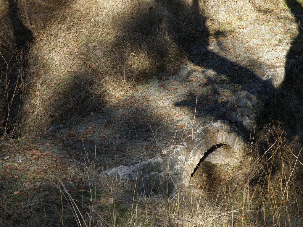 North End Trail @ Lake Berryessa, 12.12.17-38981713622_b9fb919384_b.jpg