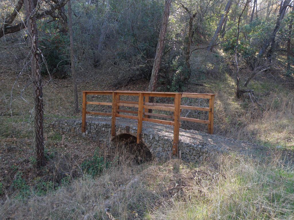 North End Trail @ Lake Berryessa, 12.12.17-38981721942_2b843ba3d6_b.jpg