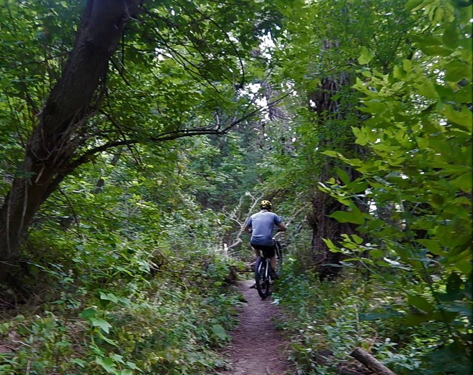 Local Trail Rides-39015444_2187746678136438_8498358574919974912_n.jpg