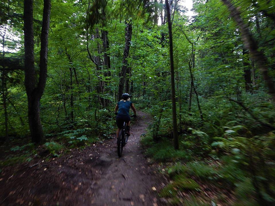 Local Trail Rides-39502554_2195812690663170_5710997573741838336_n.jpg