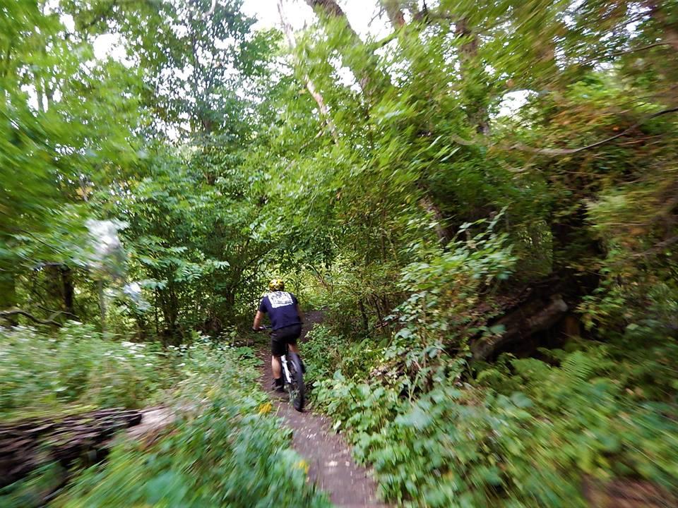 Local Trail Rides-39512519_2195820353995737_2915591355788951552_n.jpg