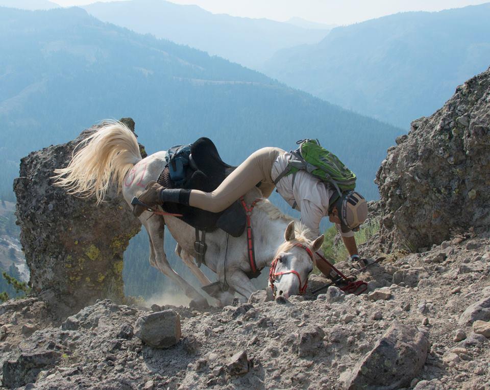 Horse dies during Tevis Cup-395254_4801324355750_1306183292_n.jpg