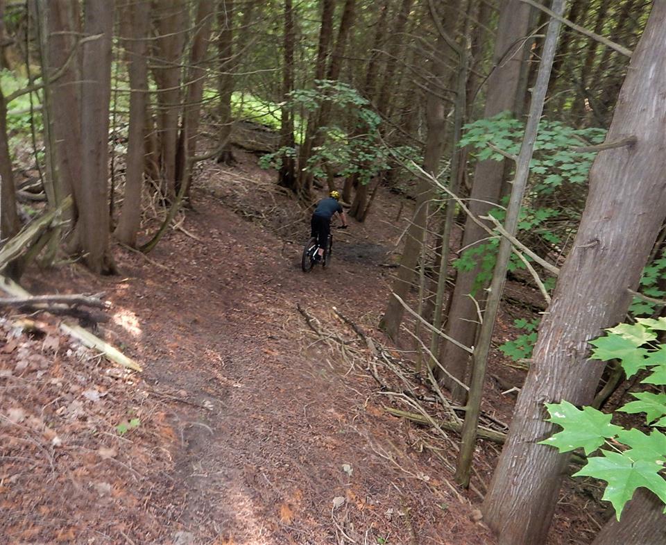 Local Trail Rides-39557888_2196911510553288_470062674235883520_n.jpg