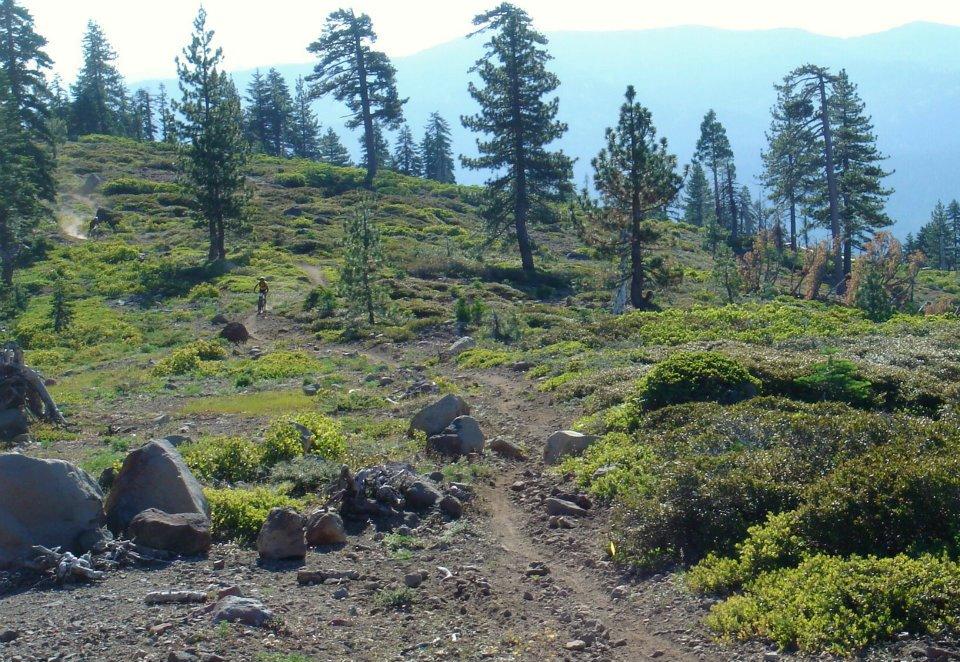 Tahoe-Sierra 100 - August 24, 2013-399423_3960865472943_1074136862_n.jpg