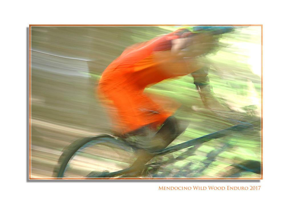 Mendocino Wild Wood Enduro Race Course-3a.jpg