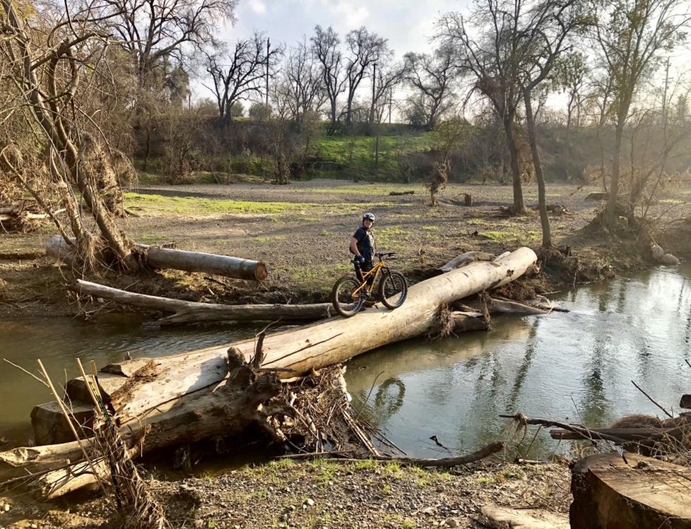 Jan 28 - 31, 2019 Weekday Ride and Trails Report-3a97940d-3abb-40da-934a-cd82ef88e0c1.jpg