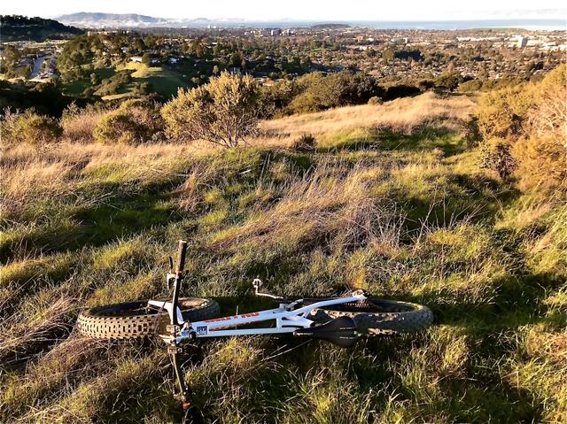 did you ride today?-3c0f8252-337a-4ae1-9f47-6f452b837fb0.jpeg