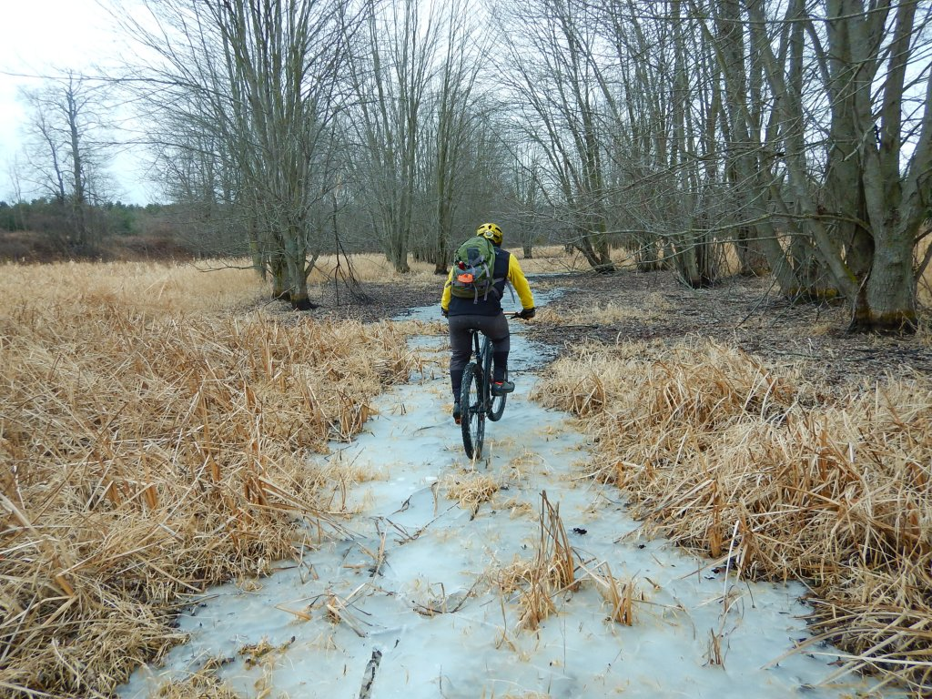 Local Trail Rides-3jixtxf.jpg