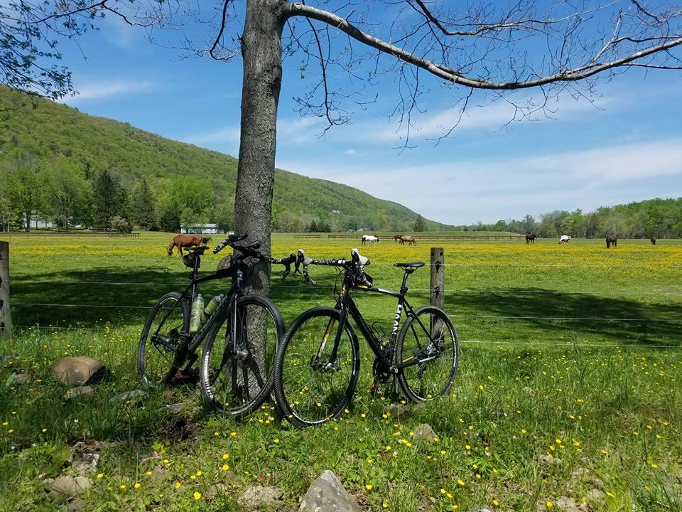 Post Your Gravel Bike Pictures-4-28-17-rimrock-1.jpg