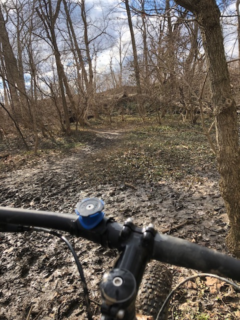 did you ride today?-4-3-16-19.jpg