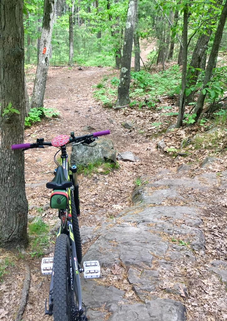 Did you ride in Massachusetts today?-4-img_5241.jpg