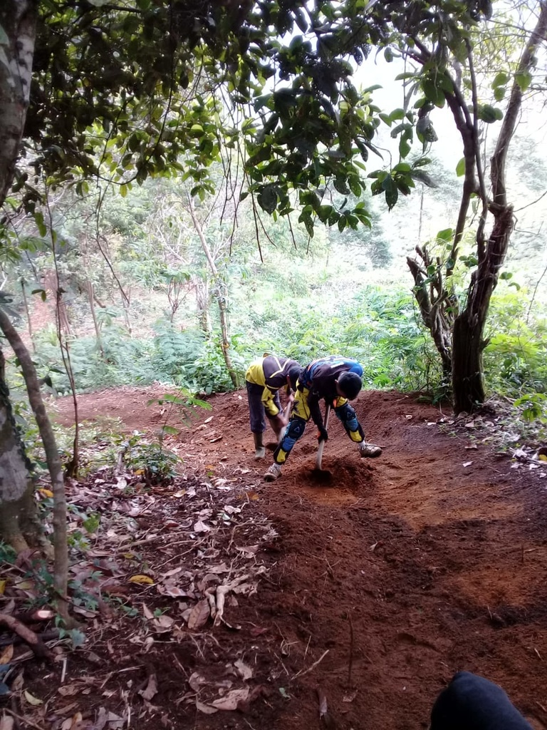 Show a Pic of Your In-process / Recently Finished Trail-4.jpg