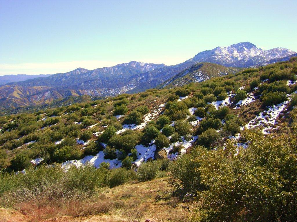 Snow on Cline Cabin Rd (Four Peaks)-4-peaks-apache-trail-040.jpg