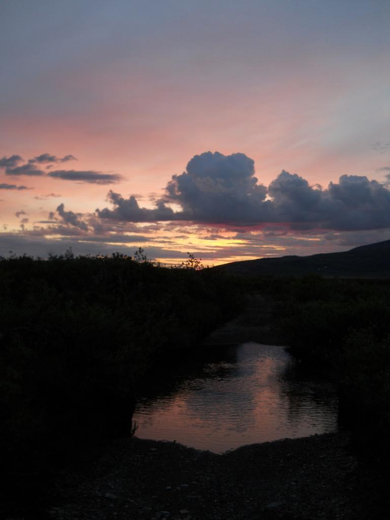 Daily fatbike pic thread-4-sunrise-trail.jpg