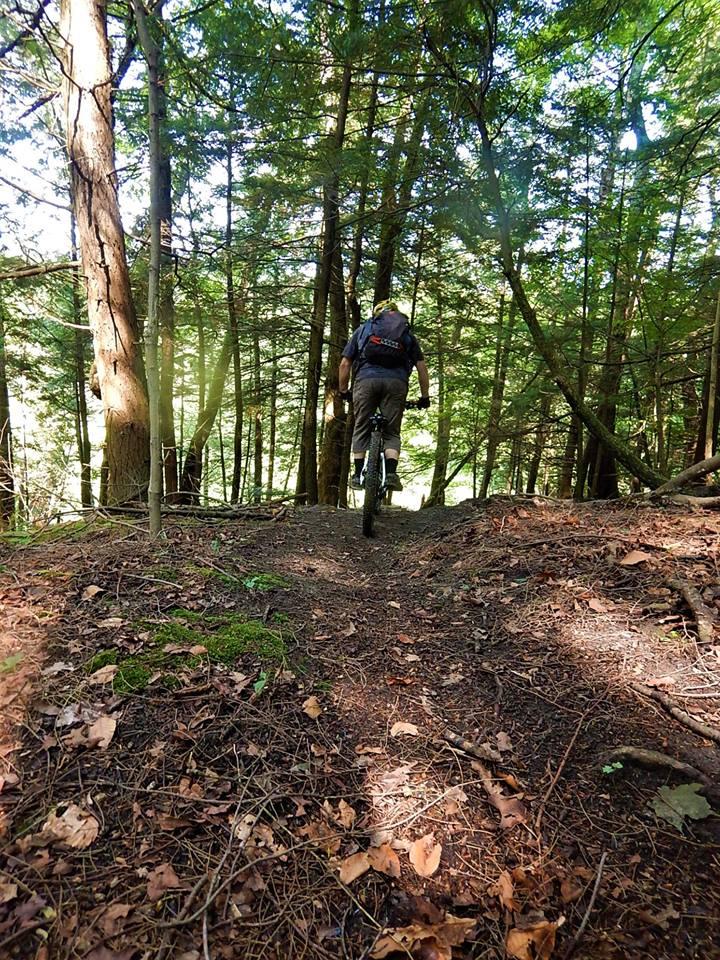 Local Trail Rides-40168621_2204123533165419_7387507026596724736_n.jpg