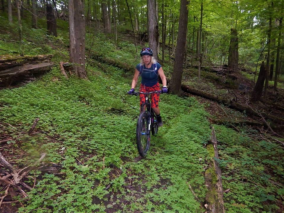 Local Trail Rides-40610491_2208424339402005_5761888688476782592_n.jpg