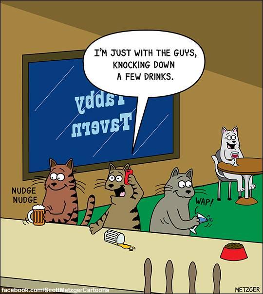 O.C. Official Daily Chuckle thread.... Comic Strip Enhanced...-41375537_2169204689981454_1338360986809139200_n.jpg