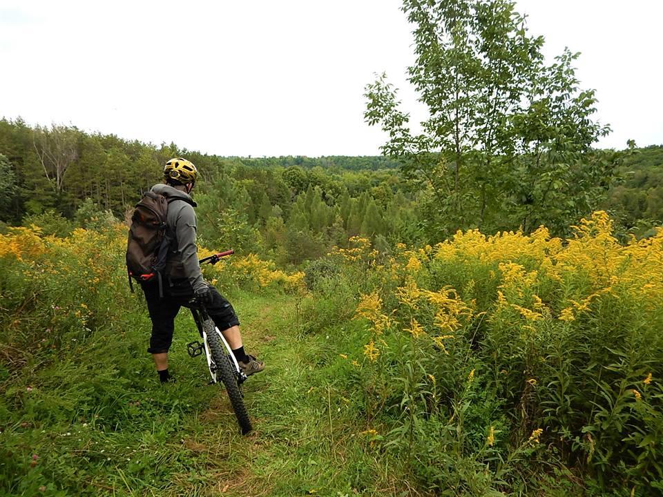 Local Trail Rides-41416172_2212858718958567_8127747358776623104_n.jpg