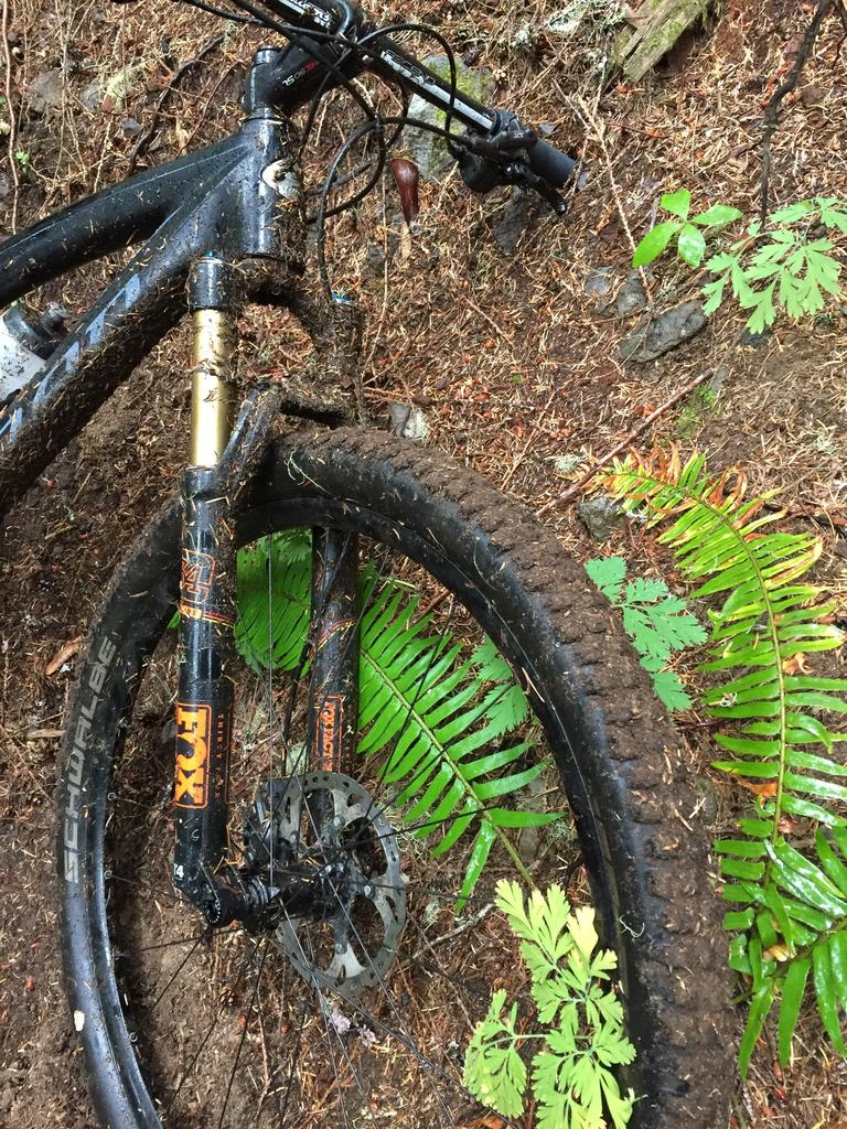 September 10-13, 2018 Weekly Ride and Trail Conditions Report-414e5132-8774-489d-8a0c-1207819f11f8.jpg