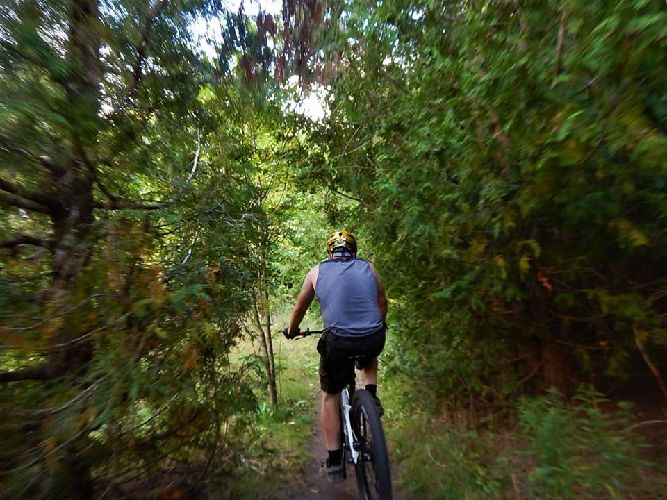 Local Trail Rides-41878353_2216523148592124_7695571153699471360_n.jpg