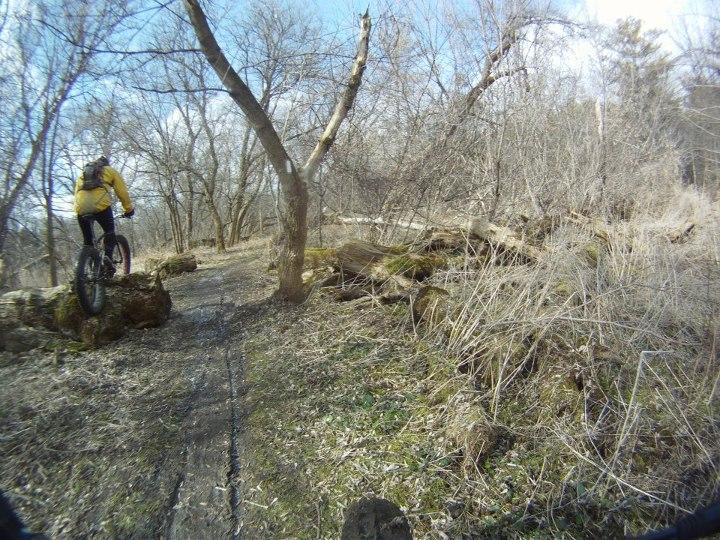 Fat Bike Air and Action Shots on Tech Terrain-420728_10150597944278262_749470865_n.jpg