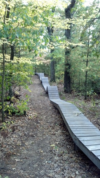 Best technical trails?-4226686_medium_4254cd1380914479.jpg