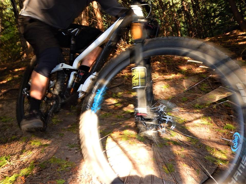Local Trail Rides-42301097_2220631361514636_8158146012016279552_n.jpg