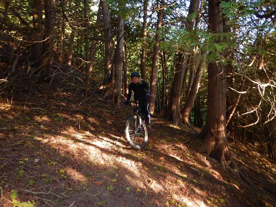 Local Trail Rides-42315304_2220634658180973_5612232880919937024_n.jpg