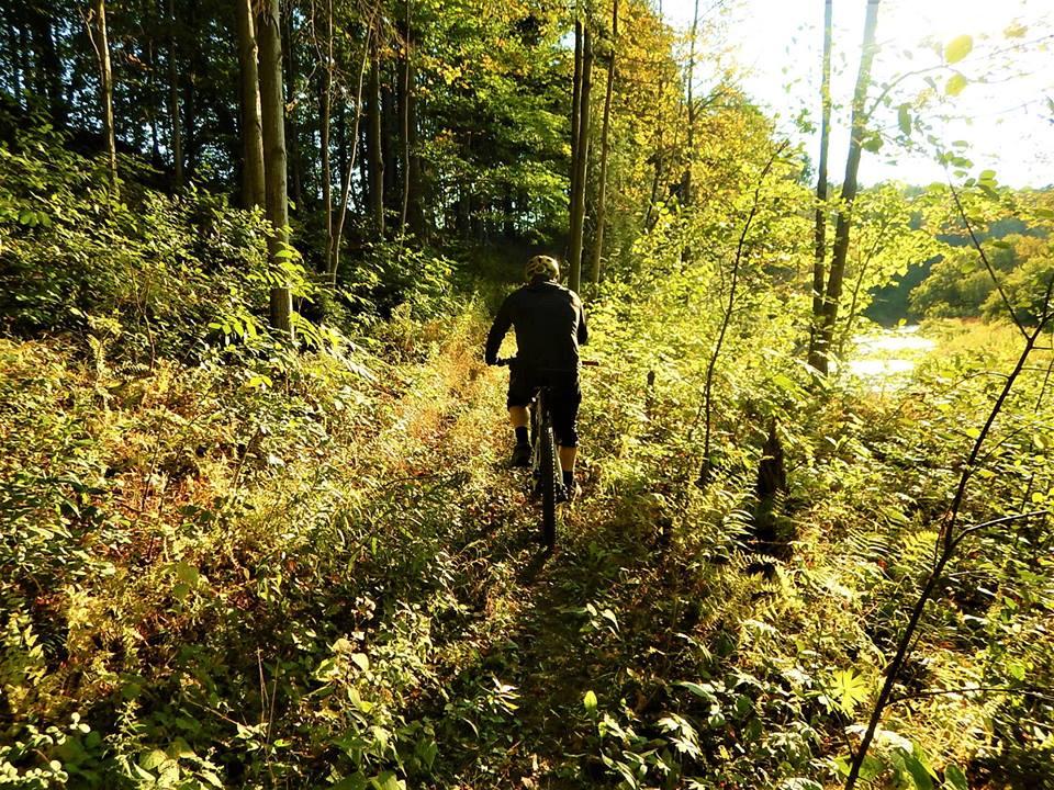 Local Trail Rides-42352596_2221222908122148_1125748874317660160_n.jpg