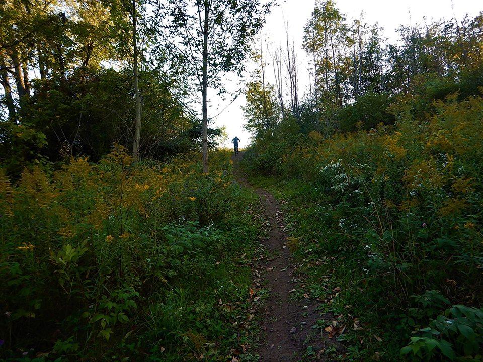 Local Trail Rides-42352596_2221223984788707_2234472360835022848_n.jpg