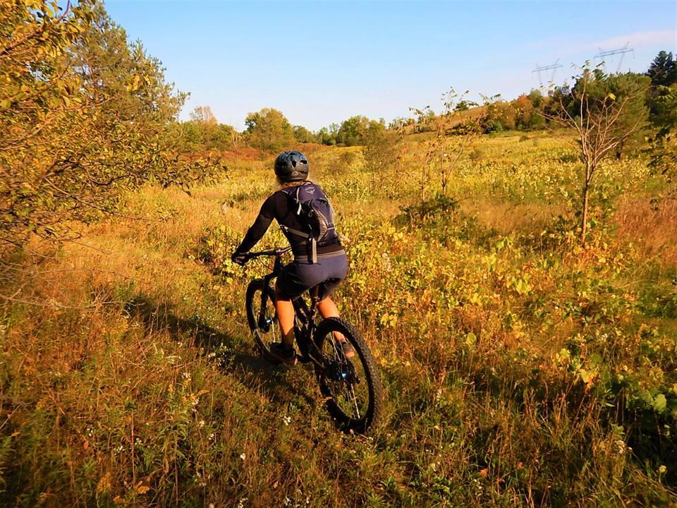 Local Trail Rides-42443961_2221219178122521_1227097638508167168_n.jpg