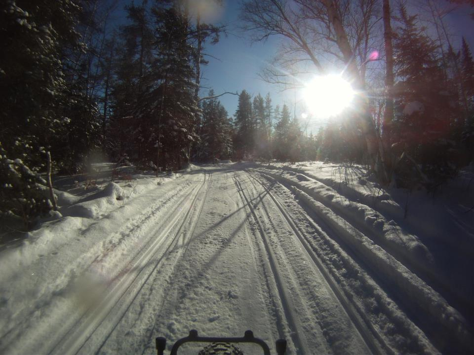 Daily fatbike pic thread-427213_4357901552373_2092153715_n.jpg