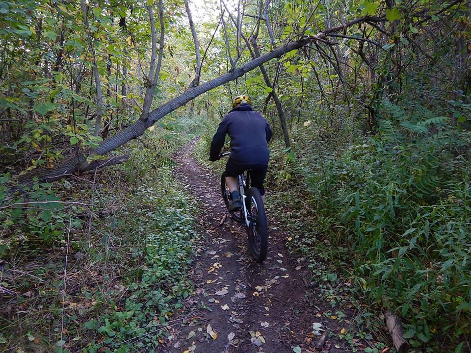 Local Trail Rides-42782647_2224697594441346_2717616655050997760_n.jpg