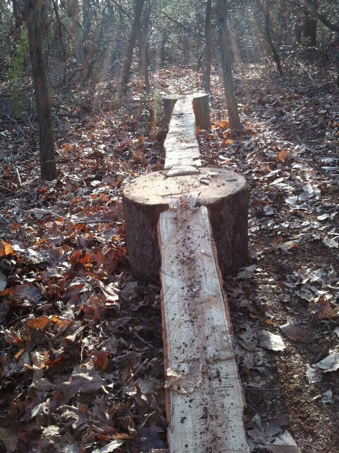 Building stunts with forest lumber only-431064_3242496711884_1550839962_32860060_140412932_n.jpg
