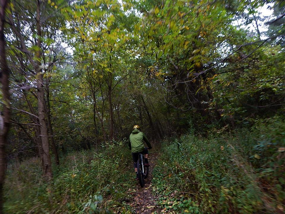 Local Trail Rides-43398233_2230183213892784_8962409544776941568_n.jpg