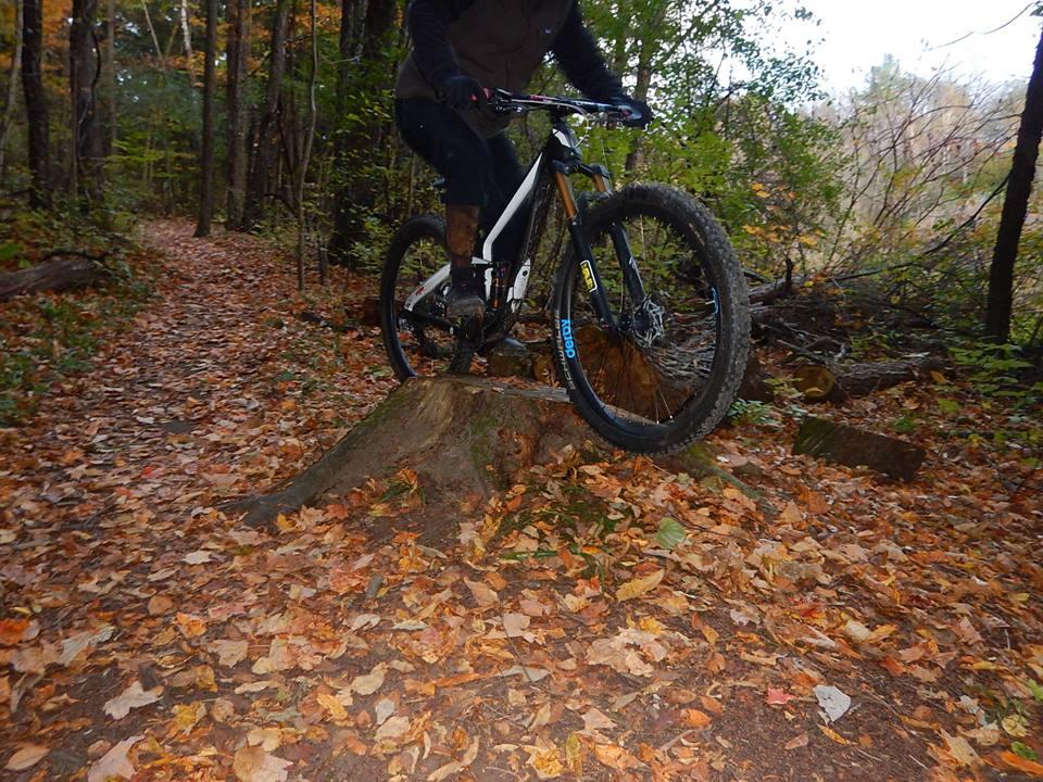Local Trail Rides-44491717_2237788983132207_8833858454893363200_n.jpg