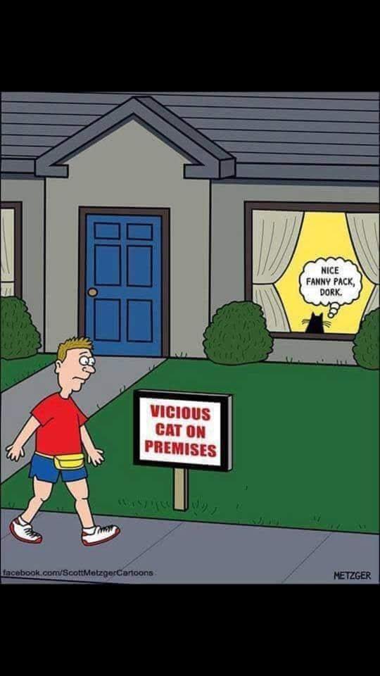 O.C. Official Daily Chuckle thread.... Comic Strip Enhanced...-44932767_10212955462982649_4100711585968816128_n.jpg