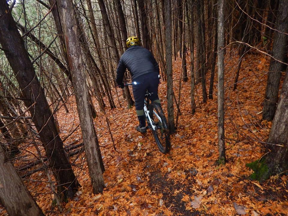 Local Trail Rides-45006881_2242864742624631_8546451793339482112_n.jpg