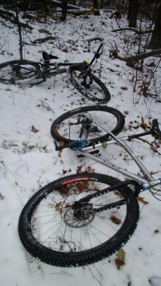 Winter Images-451-263-5962.jpg