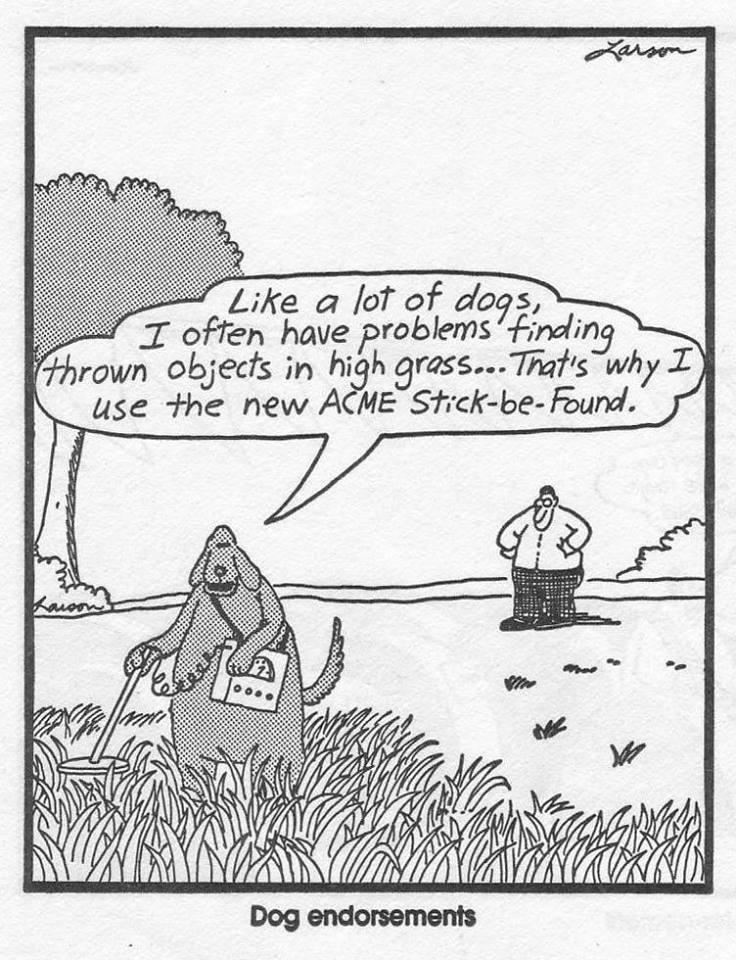 O.C. Official Daily Chuckle thread.... Comic Strip Enhanced...-45554233_1771255852985362_5916893809081319424_n.jpg