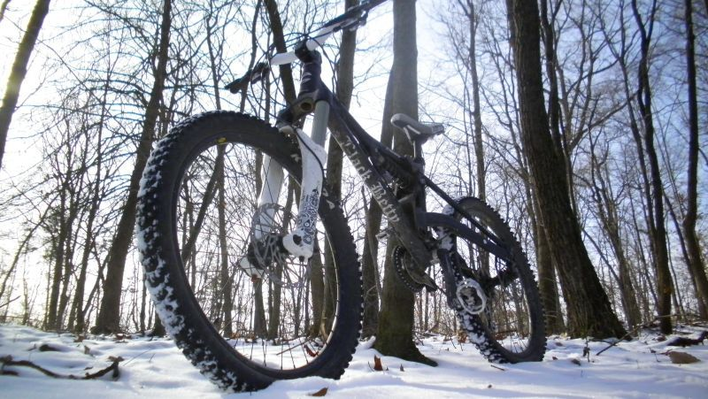 Winter Images-4569.jpg