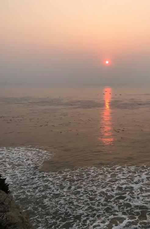Smoke on Coast is horrible!-45759047_10156784236426100_4837503149604339712_n.jpg